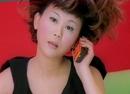 Rou Bing Fan Tuan (Meat Patty Rice Ball)/Pauline Lan