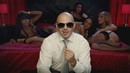 Don't Stop the Party (Clean Version) feat.TJR/Pitbull