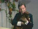 Wenn ich mit meinem Dackel von Grinzing heimwärts wackel (Peter Alexander präsentiert Spezialitäten 06.07.1969) (VOD)/Peter Alexander