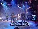 Sehnsucht nach dir (ZDF Hitparade 16.09.1993) (VOD)/Wolfgang Petry