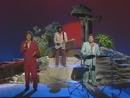 Mädchen von Capri (ZDF Länderjournal 07.07.1992) (VOD)/Die Flippers