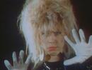 Katzen bei Nacht (Stop! Rock 20.07.1987) (VOD)/Petra Zieger