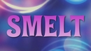Smelt (Lyric video)/Femke Meines