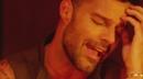 Perdóname/Ricky Martin
