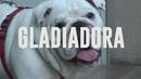 Gladiadora (Audio)/Manolo Garcia