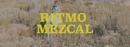 Ritmo Mezcal/Illya Kuryaki & The Valderramas