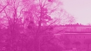 Rosa himmel (Lyric)/Jonathan Johansson