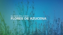 Zamba de Amor y Fortuna/Nahuel Pennisi