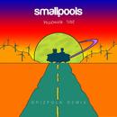 Passenger Side (Grizfolk Remix)/Smallpools