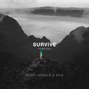 Survive (Remixes)/SAINT WKND & MAX