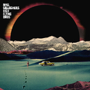 Holy Mountain/Noel Gallagher's High Flying Birds