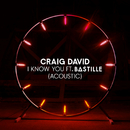 I Know You (Acoustic) feat.Bastille/Craig David