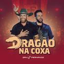 Dragão na Coxa (Ao Vivo)/Davi e Fernando