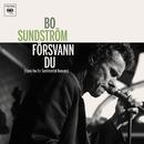Försvann du/Bo Sundström