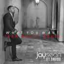 What You Want (Team Salut Remix)/Jay Sean & Davido