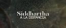 A la Distancia (Lyric Video)/Siddhartha