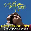 Mystery of Love/Sufjan Stevens