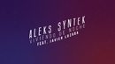Viviendo de Noche (Karaoke Version) feat.Javier Lozanda/Aleks Syntek