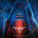 Só Uma Vibe (Prod. Twins)( feat.Carla Prata)/Dengaz