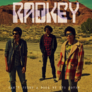 You Can't Judge a Book by the Cover/Radkey