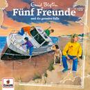 125/und die gemeine Falle/Fünf Freunde