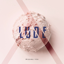 Missing You feat.Trevor de Verteuil/LUDE