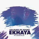Ekhaya feat.Sandile Ngcamu/Colours of Sound