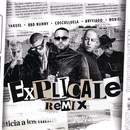 Explícale (Remix) feat.Cosculluela,Brytiago/Yandel