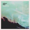 Wound Up/William Wild