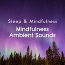 Mindfulness Ambient Sounds (Sleep & Mindfulness)/Sleepy Times
