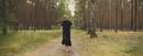 Zu dir (Official Video)/LEA
