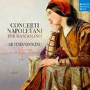 Mandolin Concerto in C Major/II. Larghetto alla siciliana/ArteMandoline