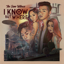 I Know, But Where/The Sam Willows