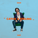 Catch a Feeling/Zach Said