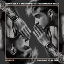 Too Good to Be True (Remixes) feat.Machine Gun Kelly/Danny Avila