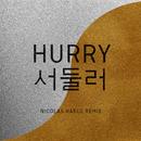 Hurry Hurry (Nicolas Haelg Remix)/Baba Shrimps