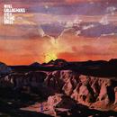 イフ・ラヴ・イズ・ザ・ロー/Noel Gallagher's High Flying Birds