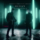 Ocean (Remixes Vol. 2) feat.Khalid/Martin Garrix