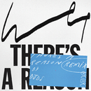 There's a Reason (DJDS Remix)/Wet