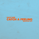 Catch a Feeling (Bedroom Mix)/Zach Said