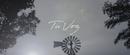Tu Voz (Official Video)/Nico Domini