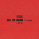 Endless Summer Freestyle feat.YG/G-Eazy