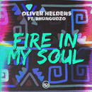 Fire In My Soul feat.Shungudzo/Oliver Heldens