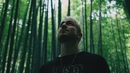 Tiger Teeth (Official Video)/WALK THE MOON
