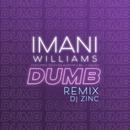 Dumb (DJ Zinc Remix) feat.Tiggs Da Author & Belly Squad/Imani Williams