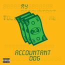 Accountant/DDG
