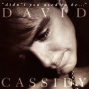 Didn't You Used To Be.../David Cassidy