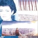 Sobre el Latido de la Ciudad/Amaya