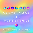 Waste It On Me (Cheat Codes Remix) feat.BTS/STEVE AOKI