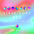 Waste It On Me (W&W Remix) feat.BTS/Steve Aoki